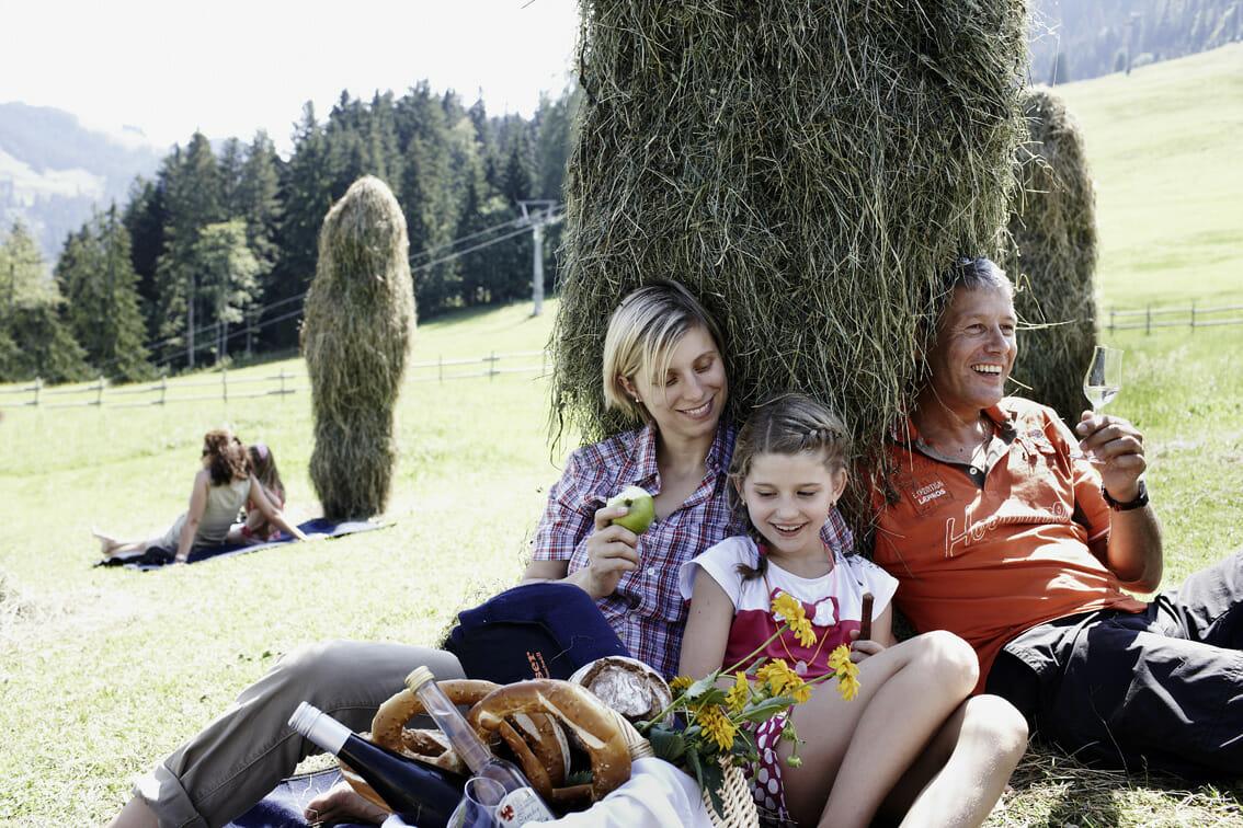 Picknick auf der Wiese