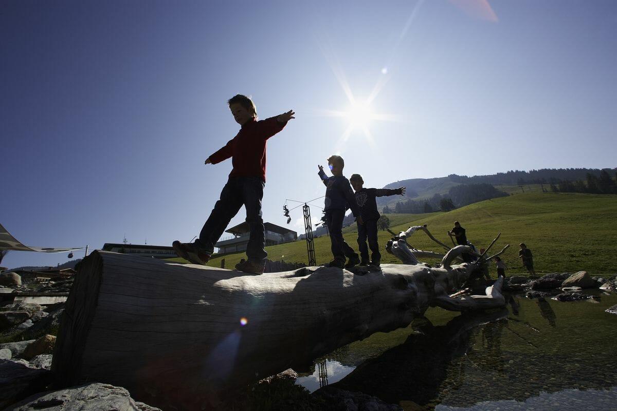 Balancieren über Stock und Stein